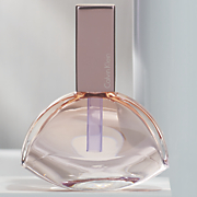 women s endless euphoria fragrance by calvin klein