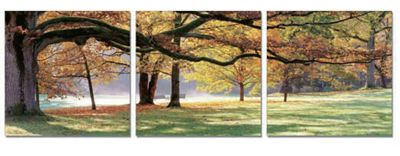 3-Piece Fall Tree Wall Art
