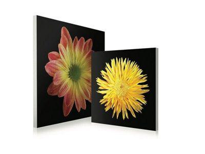 2-Piece Floral Wall Art