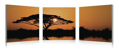 3-Piece Serengeti Art
