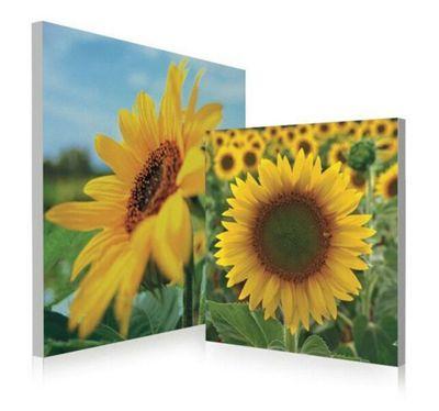 2-Piece Sunflower Wall Art