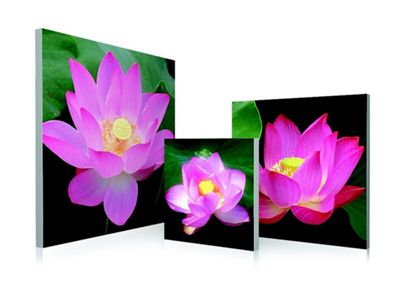 3-Piece Water Lily Wall Art