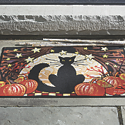 moonlight cat mat   30  x 18