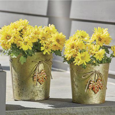 Set of 2 Galvanized Buckets with Jute Trim