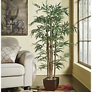 bamboo tree 277