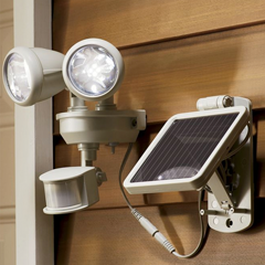 Set of 2 Solar Coo-Coo Birds - Shop Lighting