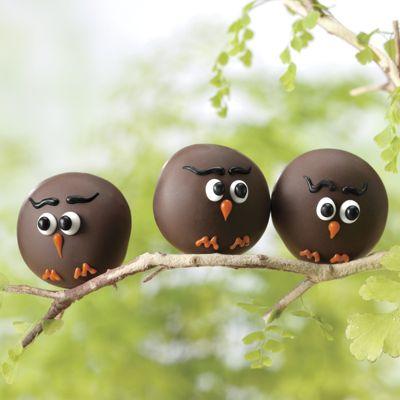 Owl Truffles