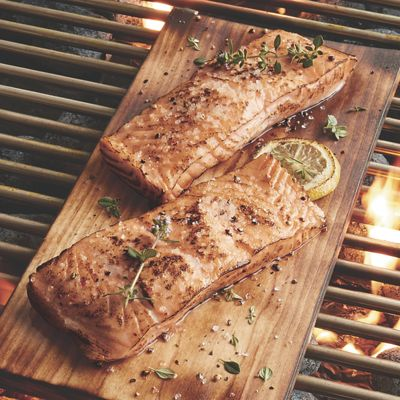 Salmon Filets Plus Grilling Planks
