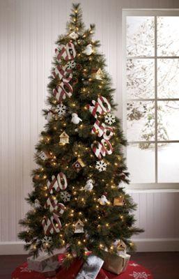 Lincoln Cashmere Tree