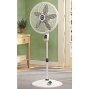 Lasko Elegance Pedestal Fan