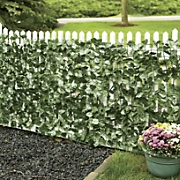 Ivy Privacy Fence