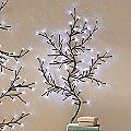 Short LED Starlight Creeper Tree