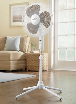 16 Quot Oscillating Pedestal Fan From Ginny S Ji737970