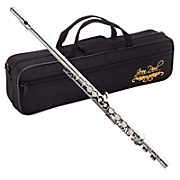 Flute with Case