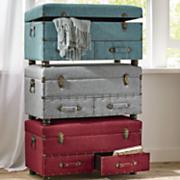travelers trunk
