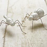 set of 2 white bugs