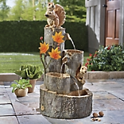 squirrel fountain