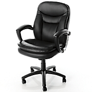 Office Chair with Vibrating Massage