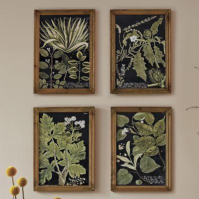 Fir Wood Picture Frame Set