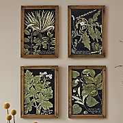 Fir Wood Picture Frame Set