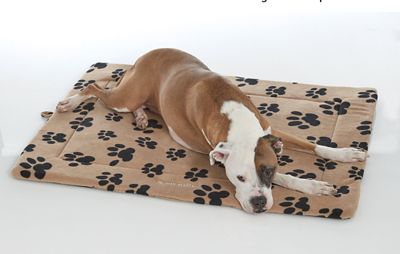 Personalized Thermal Pet Mat Small