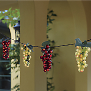 6 pc  grape light string