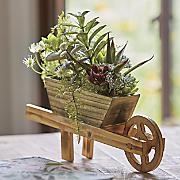 succulent wagon