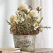 Cabbage Rose Floral