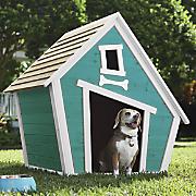 Whimsical Doghouse