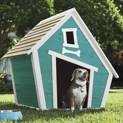 Whimsical Doghouse