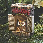 Owl On Stump House