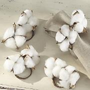 Set of 4 Cotton Boll Napkin Rings
