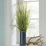 Grasses in Teal Vase
