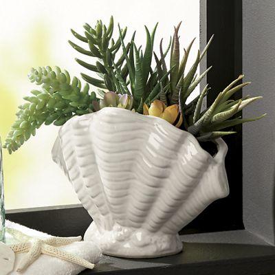 Ceramic Shell Succulent