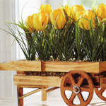 Tulip Flower Cart