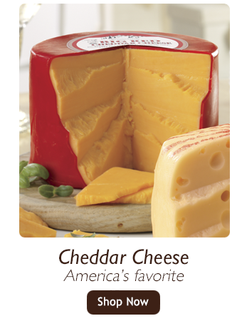 Cheddar Cheese-America's favorite-